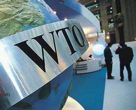 WTO挑战中国仪器仪表产业